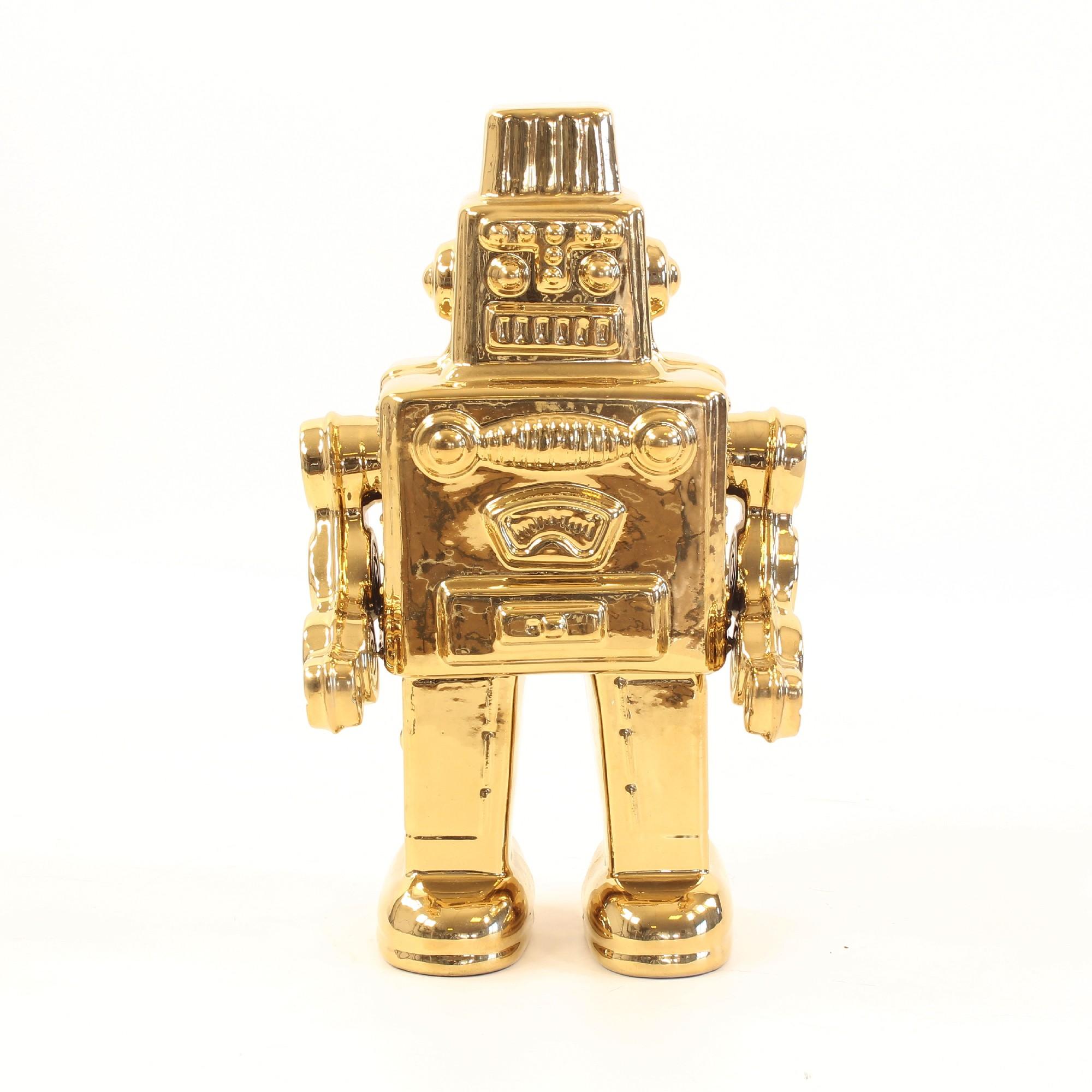 My Robot Robbi